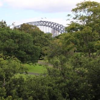 bridge-from-lavendar-bay-garden