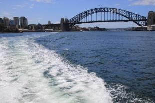wake-under-the-bridge