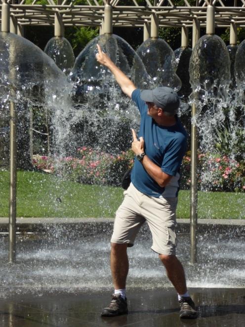 lyn david in fountain