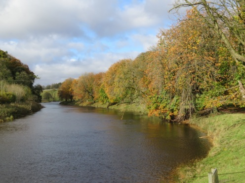 River Wharfe on Dales Way