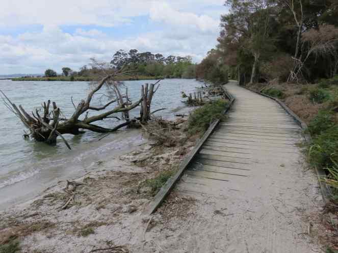 Boardwalk to Sulphur Point