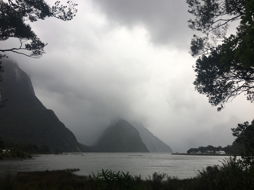 LYN VIEW OF MILFORD SOUND