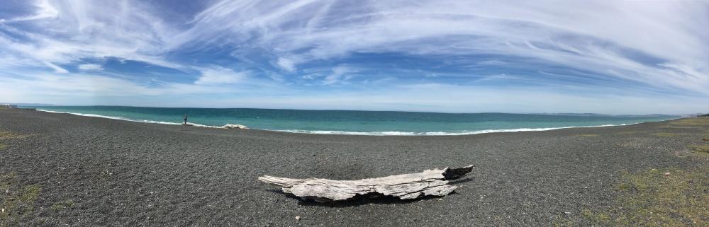 NApier Beach Pano