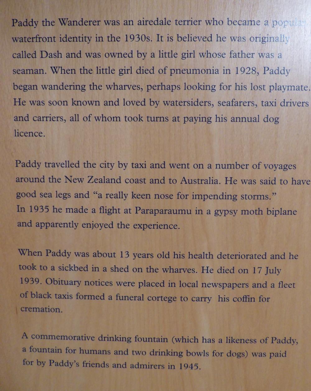 Paddy Story