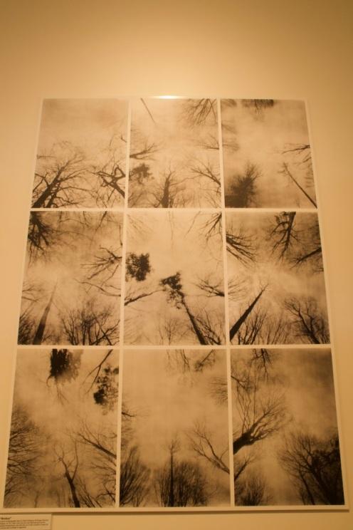 Pinhole camera shots