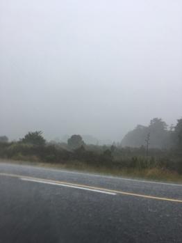 Rain Storm 2
