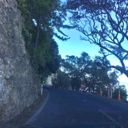 Road out of Coromandel