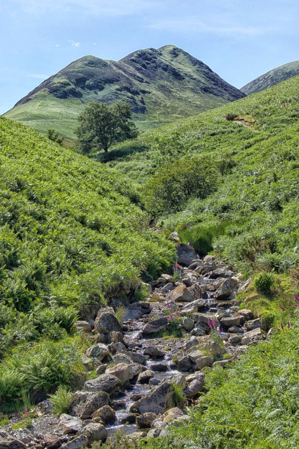 Ard Crags From Rigg Beck