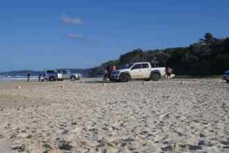 utes on the beach