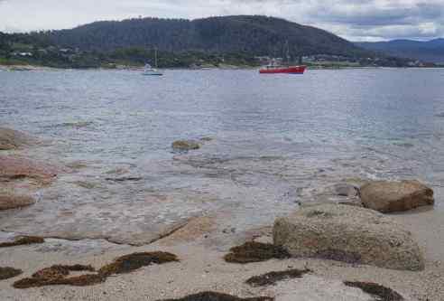 Harbour Bicheno