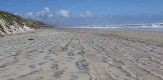 Ocean Beach 5