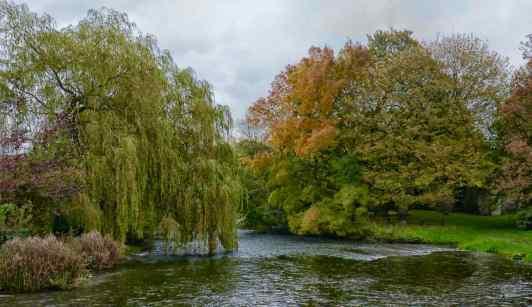 River Wye at Ashford 2