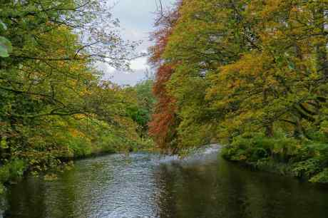 River Wye at Ashford