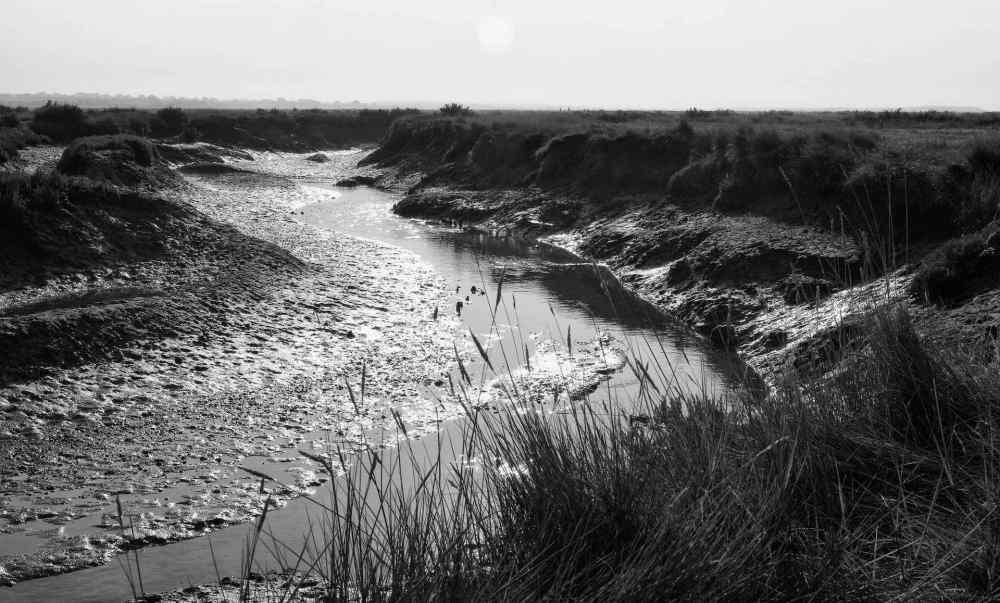 Muddied Gulley - Stiffkey